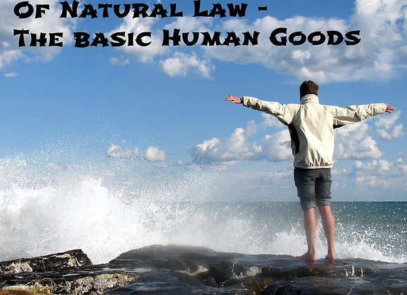 Finnis' Development of Natural Law - Film One