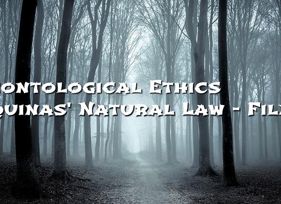 Aquinas' Natural Law - Laws and Purpose