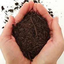 compost in hands square.jpg