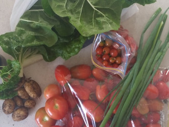 Try garden vege swapping in your community!