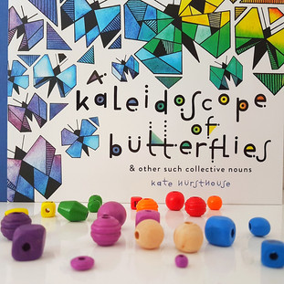 A Kaleidoscope of Butterflies book review