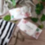 wipes 2 packs.jpg