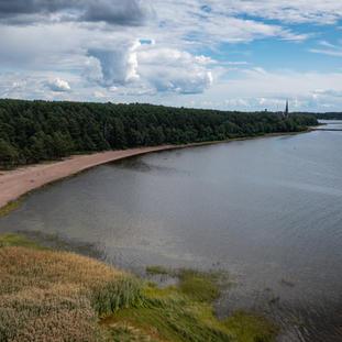Koiviston salmen rantaa syksyllä.