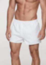 Sportswear Shorts TAB 1603.webp