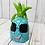 Thumbnail: Pineapple Clay Kit