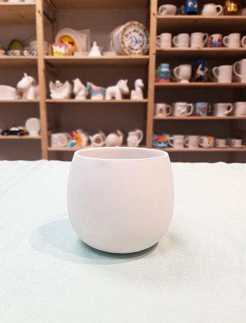 Air Plant Vase