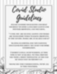 studio guidelines (1).png