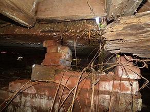 termite damage.JPG