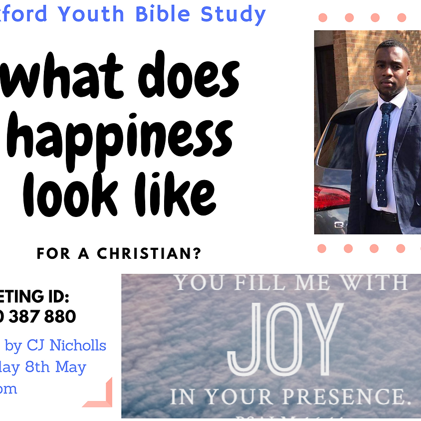 Youth Bible Study  - What does happiness look like?
