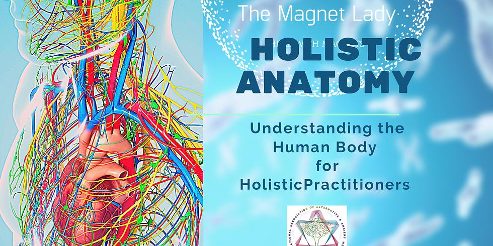 Holistic Anatomy: Understanding the Human Body