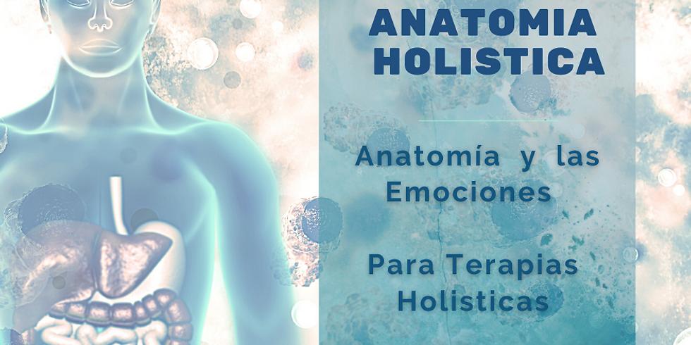 Anatomia Holistica: Entendiendo el Cuerpo Emocional