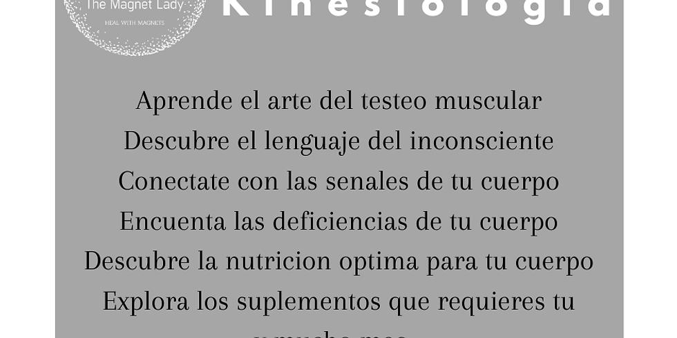 Kinesiología Fundamentos: Aprende el Arte del Testeo Muscular