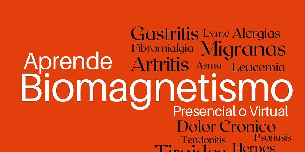 Biomagnetismo Certificacion