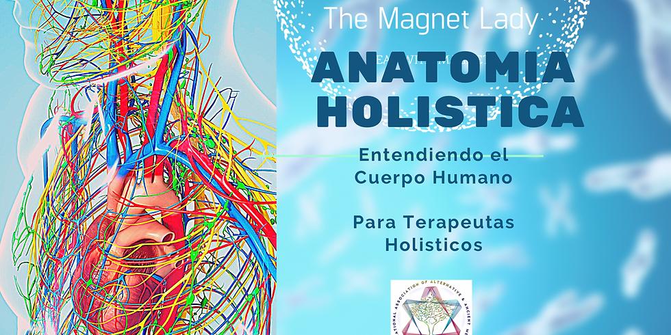 Anatomia Holistica: Entendiendo el Cuerpo Humano