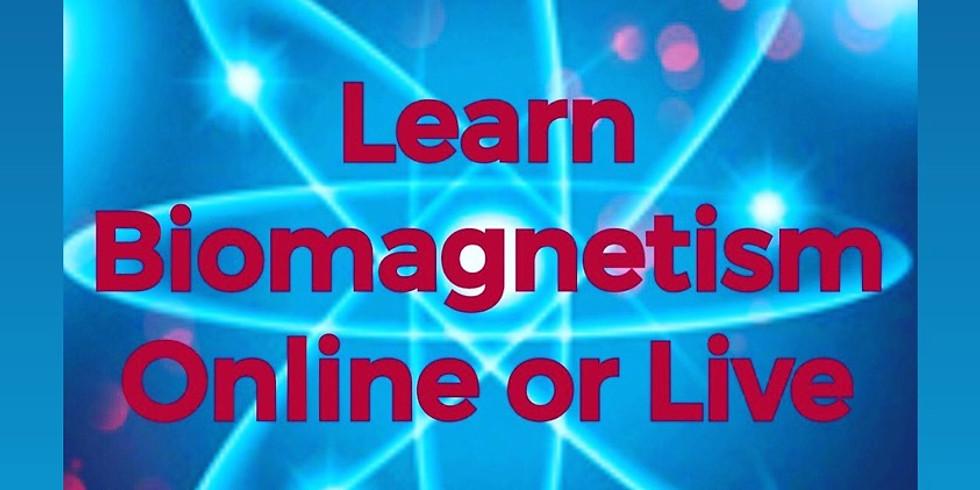 Multidimensional Biomagnetism Certification Live & Online