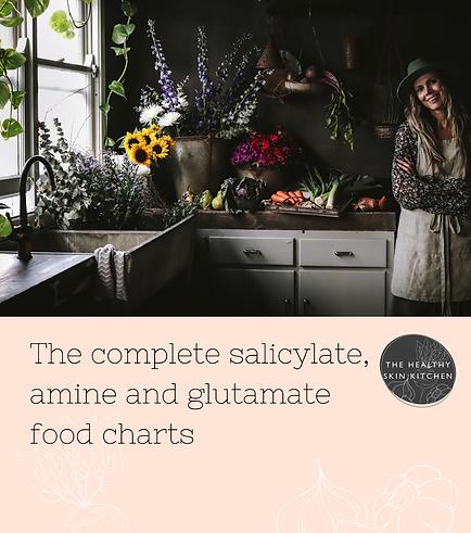 salicylate food chart from karen fischer.png