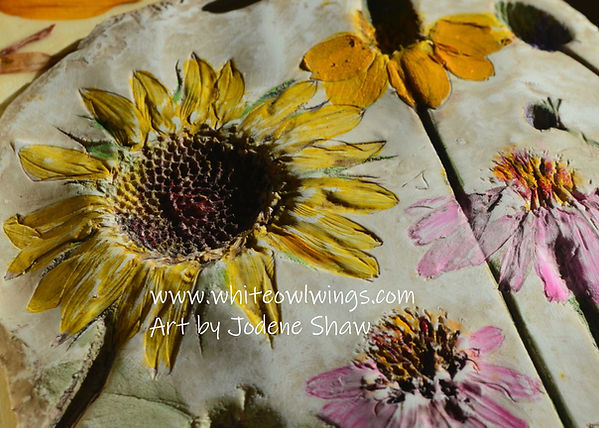 Floral-Diversity-Sunflower-Close-up-for-