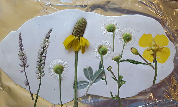 Wildflowers-rolled-in-clay.jpg