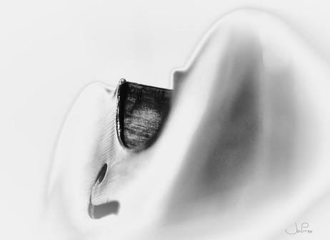 Blanc violoncelle