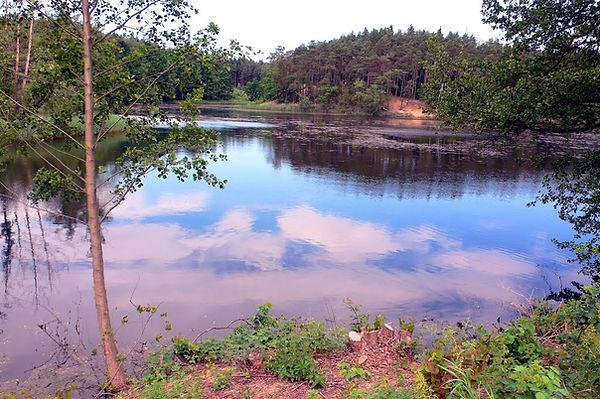 Třemošenský rybník před rekonsrukcí.jpg