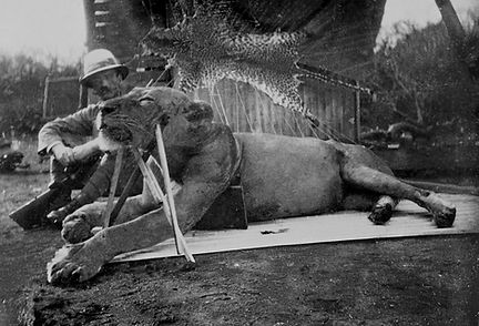 John Patterson with one Tsavo lion.jpg