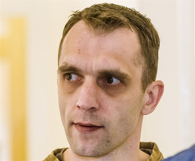 David Virgulák
