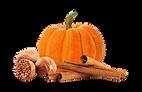 5784656-pumpkin-pie-clipart-77735-best-o