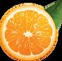 orange_PNG775.png