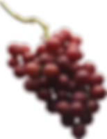 grape_PNG2977.png