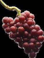 grape_PNG2977.png