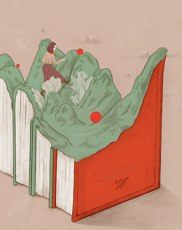1.LINUS_Mountain's books_Paravicini.jpg