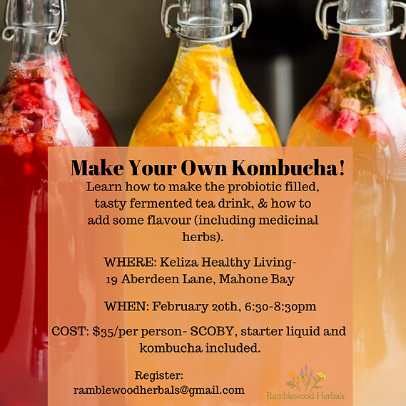 Kombucha workshop (2).png