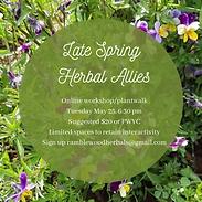 Late Spring Herbal Allies.png
