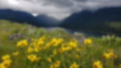 Wildflowers on hillside about a mountain lake with mountain in the background