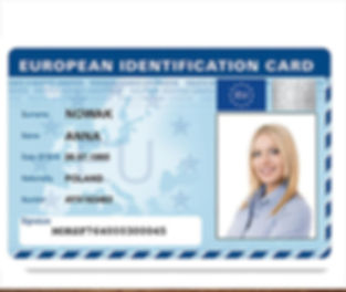 european-drivers-license - Copy.jpg