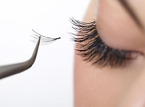 Lash trainingpic Volume.JPG