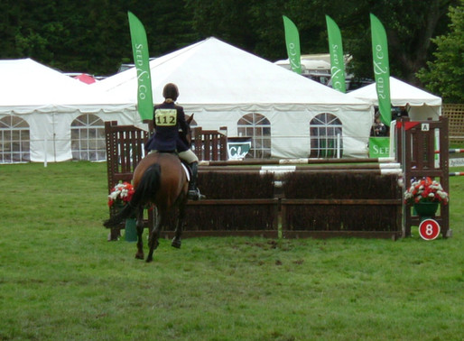 Analysing Your Show Jumping Performance