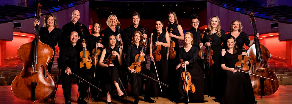 Camerata Queensland's Chamber Orchestra
