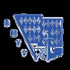 BMYV Logo.png