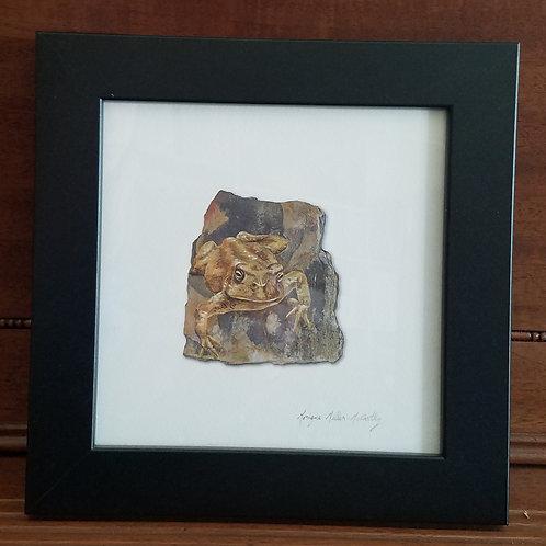 Framed Toad 3