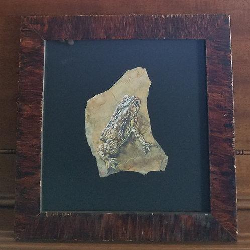 Framed Toad 2