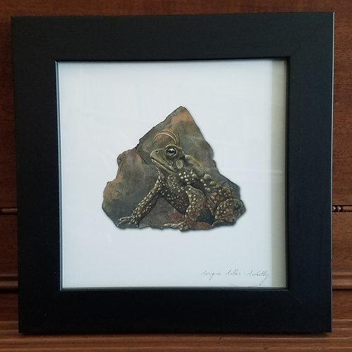 Framed Toad 4