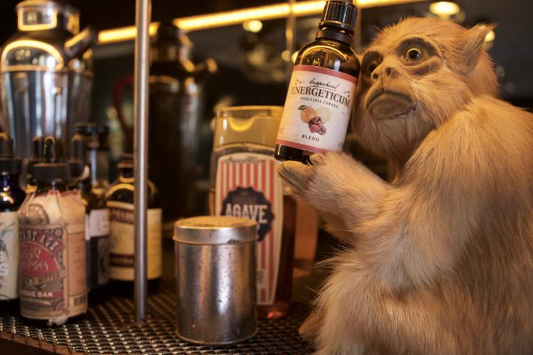 Monkey 47 Gin Bar