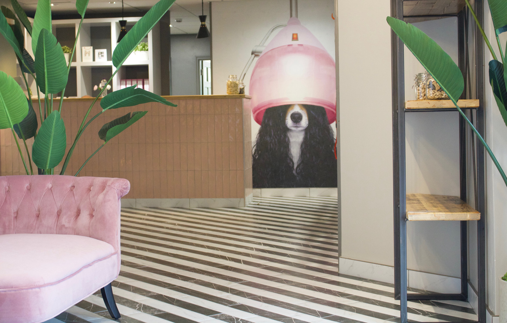 Love Ur Dog Boutique Hotel