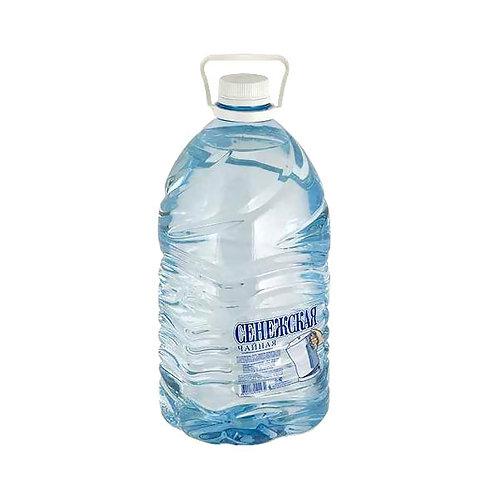 Сенежская 5л  (1х2) вода оптом