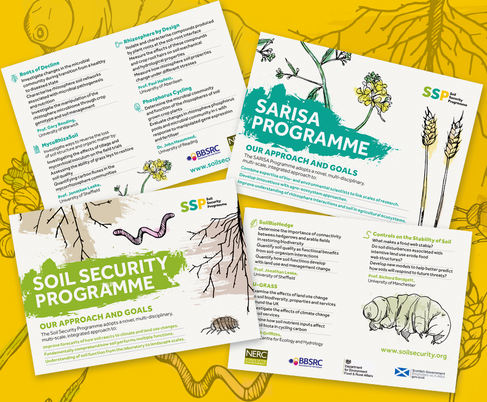 Soil Security Programme