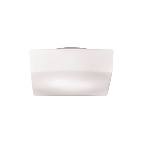 "Amata 8"" Ceiling Mount"