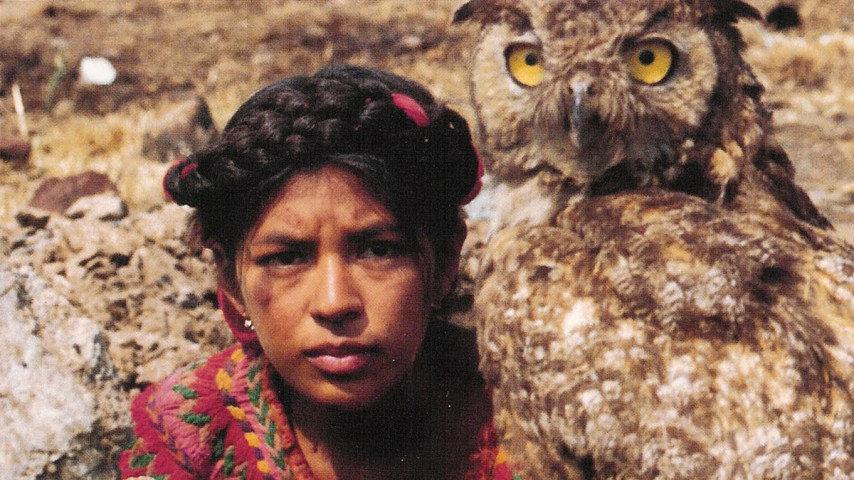 Pumans dotter
