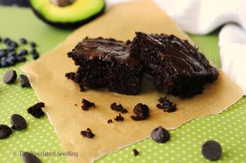 Black Bean and Avocado Brownies