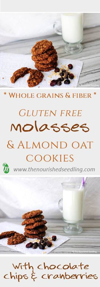 gluten-free-molasses-oat-cookies
